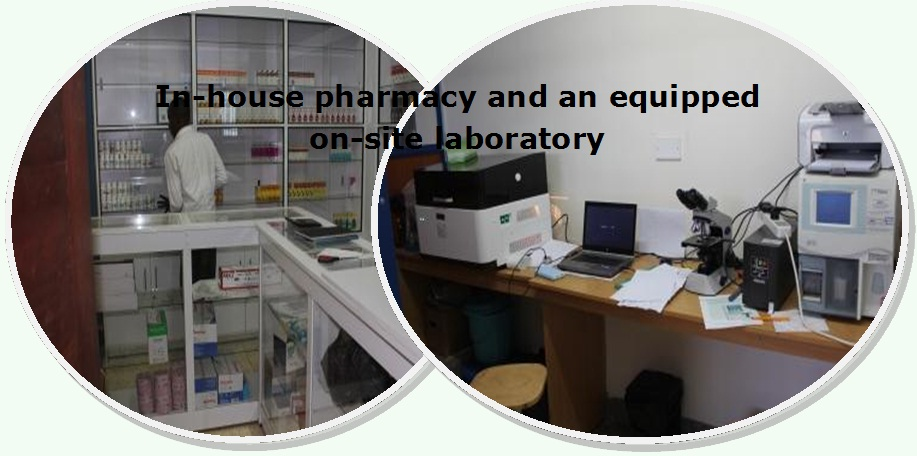Pharmacy and lab